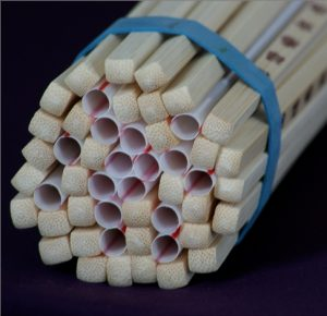 Vascular bundle of a branch illustrated by a bundle of chopsticks and straws
